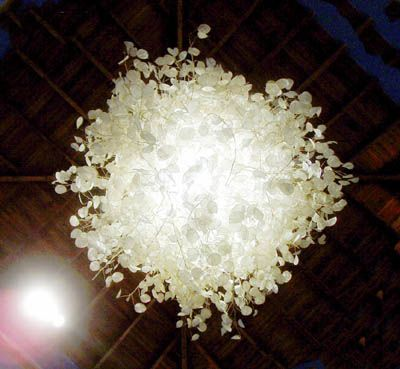 lamp made from silver dollar plant. with this idea, we can turn it into a silver dollar plant ball.