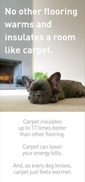 http://www.messinasflooring.com/residential/carpet/