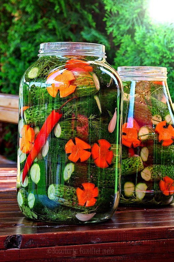 Sun Pickles | Bucataria Familiei Mele
