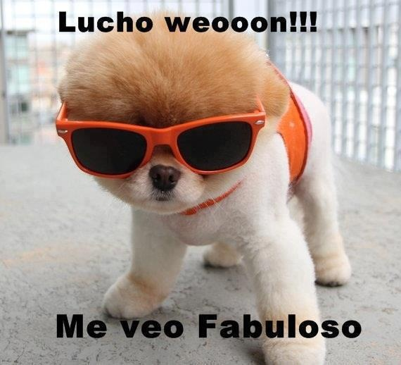 lucho...!
