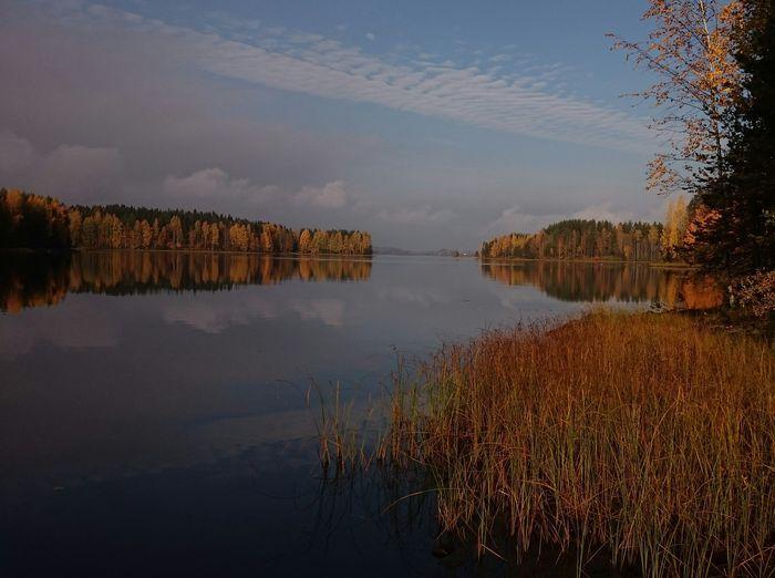 Täydellisen ruskan metsästys – Lähetä kuva syksyn väriloistosta   Yle Uutiset   yle.fi