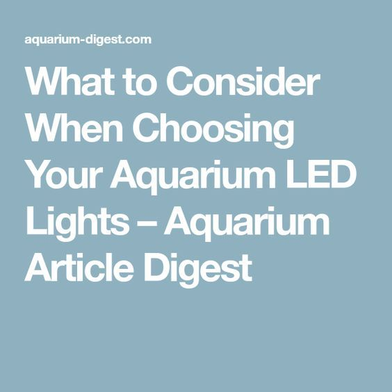 What to Consider When Choosing Your Aquarium LED Lights – Aquarium Article Digest