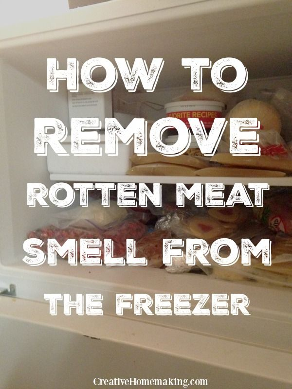 How To Get Rid Of Fish Smell In Freezer