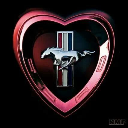 Live Love Mustang