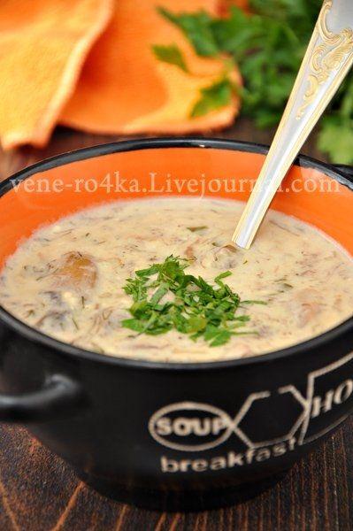 Фото к рецепту: Суп из лесных грибов и сыра