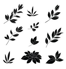 Image result for black silhouette leaves image