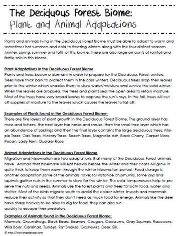 Unfortunate coincidence poem analysis essays