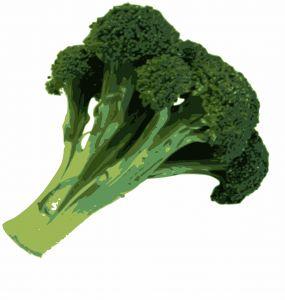Ik eet het eigenlijk te weinig want broccoli is zo enorm goed voor je! Voordelen van broccoli op een rijtje. versterkte botten - helpt tegen borstkanker - bevordert spijsvertering - versterkt immuunsysteem - helpt tegen prostaatkanker - ontgiftigd huid - helpt tegen maagklachten. Lees meer over broccoli op de Juicen met Hugo Blog!
