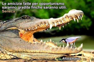 Aforismario®: Opportunismo e Opportunisti - Aforismi, frasi e ci...