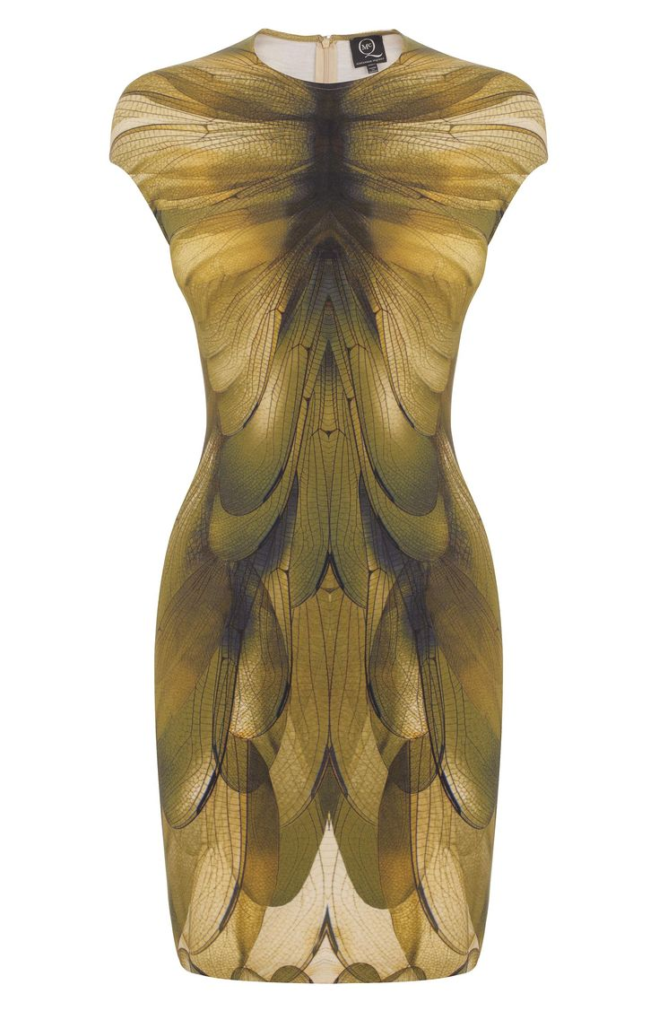 Dragonfly Wings dress, Alexander McQueen