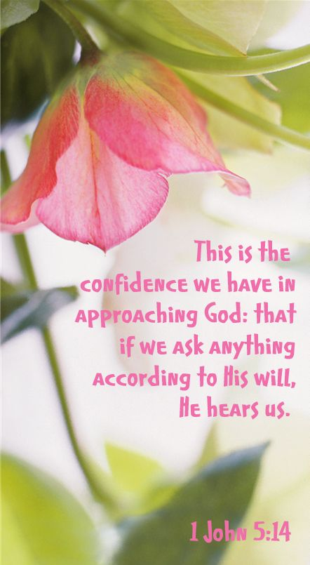 1 John 5:14 (KJV) And this is the confidence that we have in him, that, if we ask any thing according to his will, he heareth us: