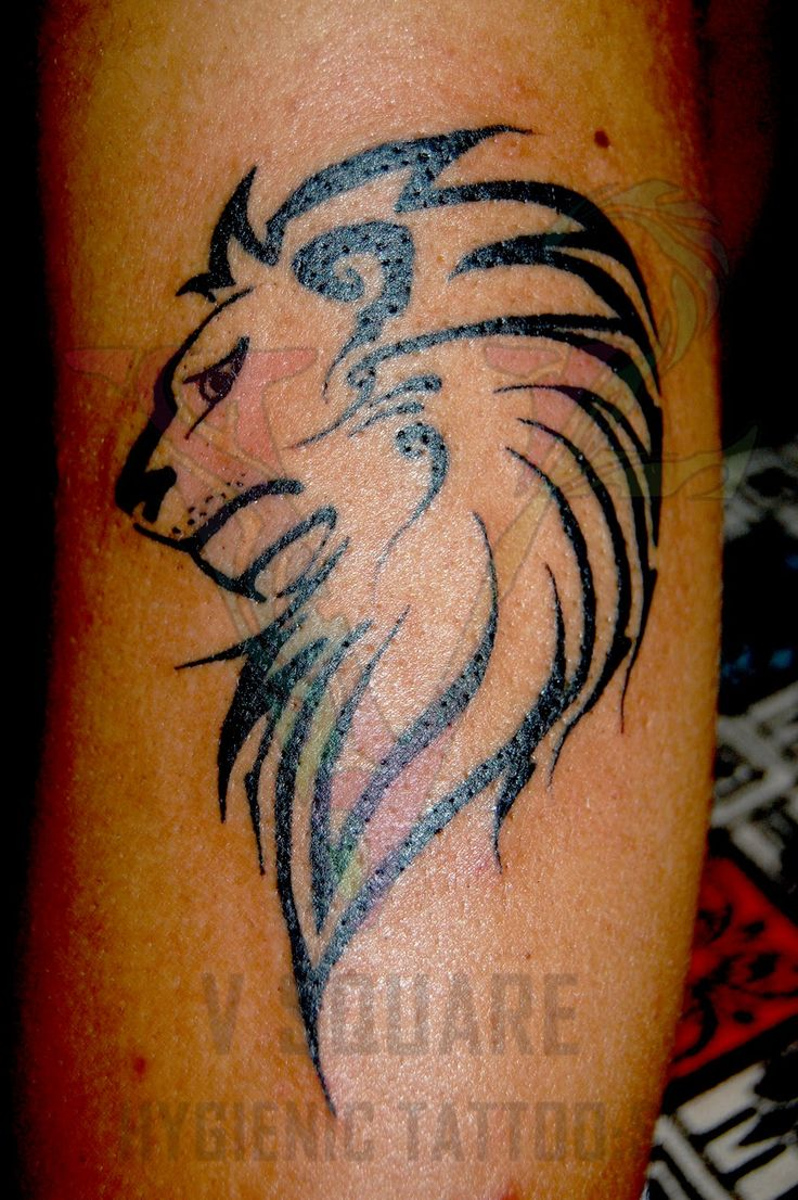 150 realistic lion tattoos and meanings 2017 collection - Tibal Lion Tattoo Tribal Horse Tattoo