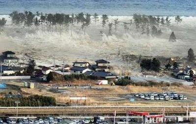 The tsunami disaster essay