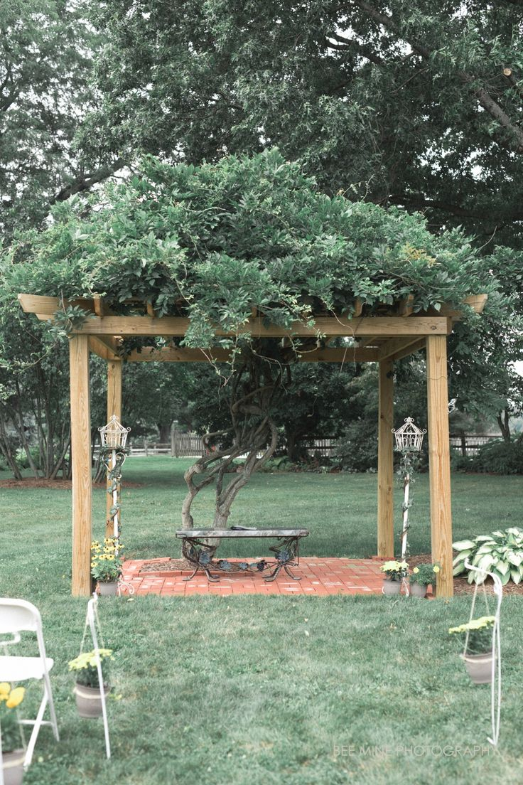 outdoor weddings near akron ohio%0A Bee Mine Photography    Cleveland   Canton Ohio Wedding Photographer Wedding  programs  outdoor wedding