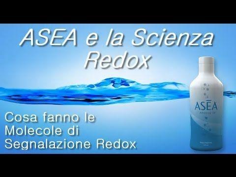 ASEA e la Biochimica Redox