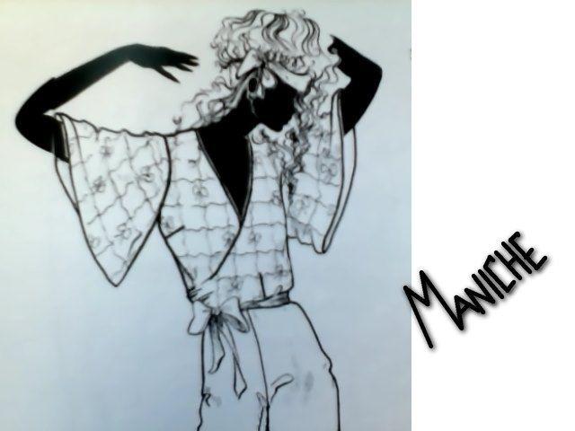 Le MANICHE