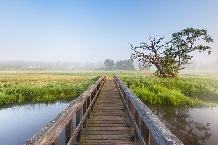 Drentsche Aa - Oudemolen, Drenthe, Netherlands by Bart Heirweg