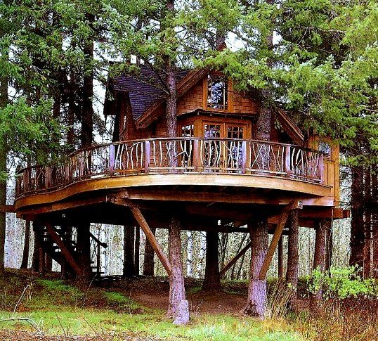 Treehouse Masters Treehouse Point: 21 Best De Waanzinnige Boomhutten Images On Pinterest