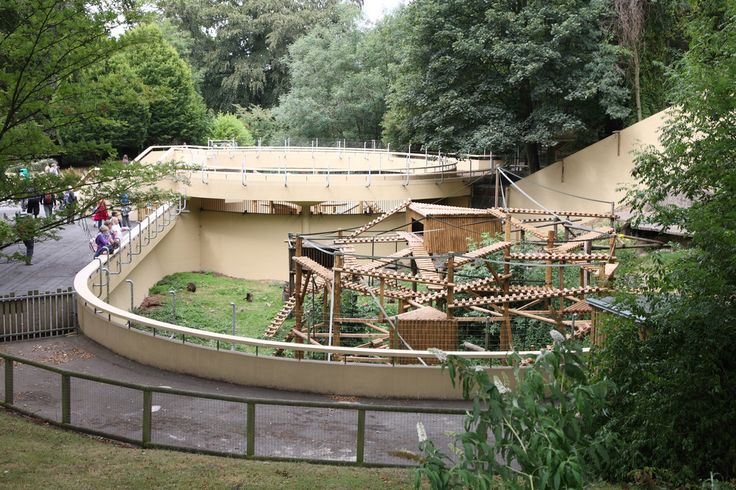 dudley zoo - Google Search