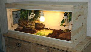 terrarium maison tortue