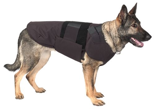 1000 ideas about body armor on pinterest plate carrier for Ballistic dog