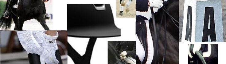 COLLECTIVE MARKS - PACES AND REGULARITY - WALK | The Crystal System - DressageThe Crystal System – Dressage
