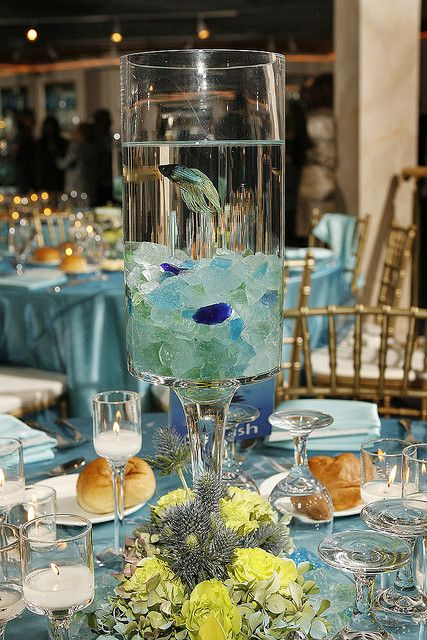 I did this for a large church Christmas concert - (hospitality/reception area)  beta fish centerpiece.  Sent the fish home at the end of the weekend performances with the cast and their children.