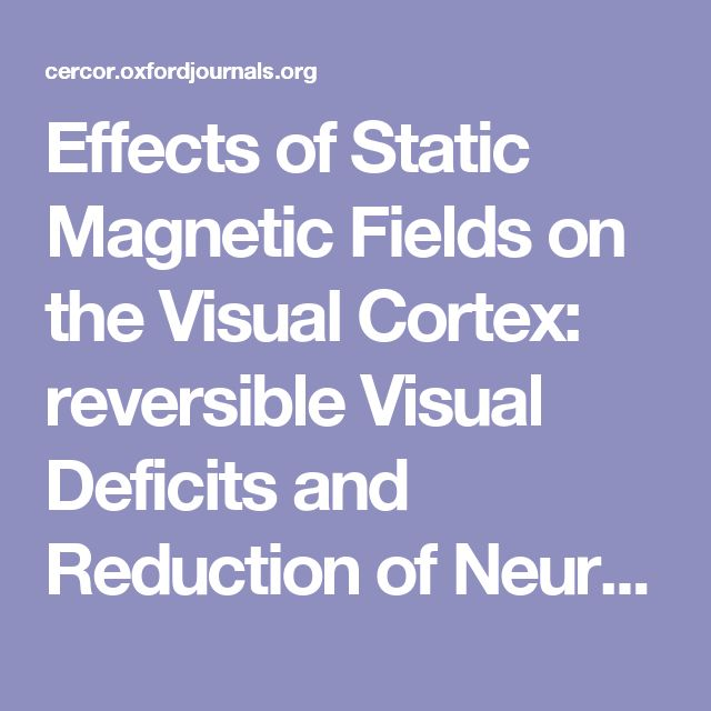 Effects of Static Magnetic Fields on the Visual Cortex: reversible Visual Deficits and Reduction of Neuronal Activity
