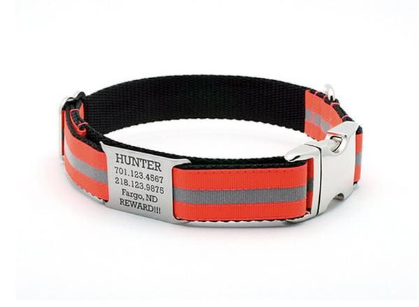 Blaze Orange Reflective Dog Collar with Built In Personalized NamePlate – Bark Label