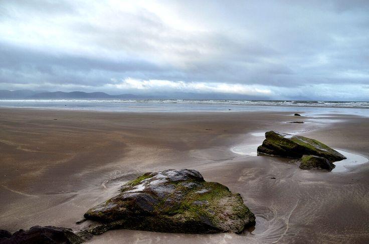 Mossy Rocks On Beautiful Inch Beach in Ireland