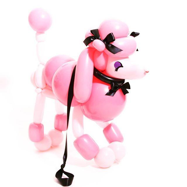 Pin On Ballooning