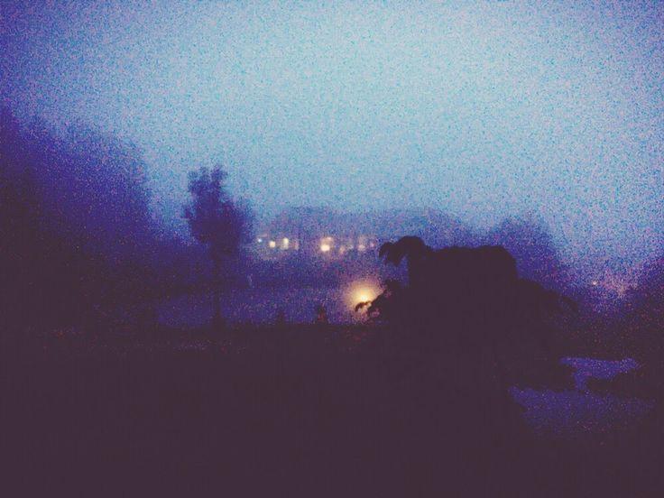 雨の中、湯の原温泉キャンプ場に行って来ました。…