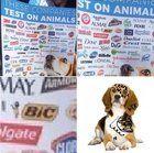 Big pens tests on animals? Bolly4u