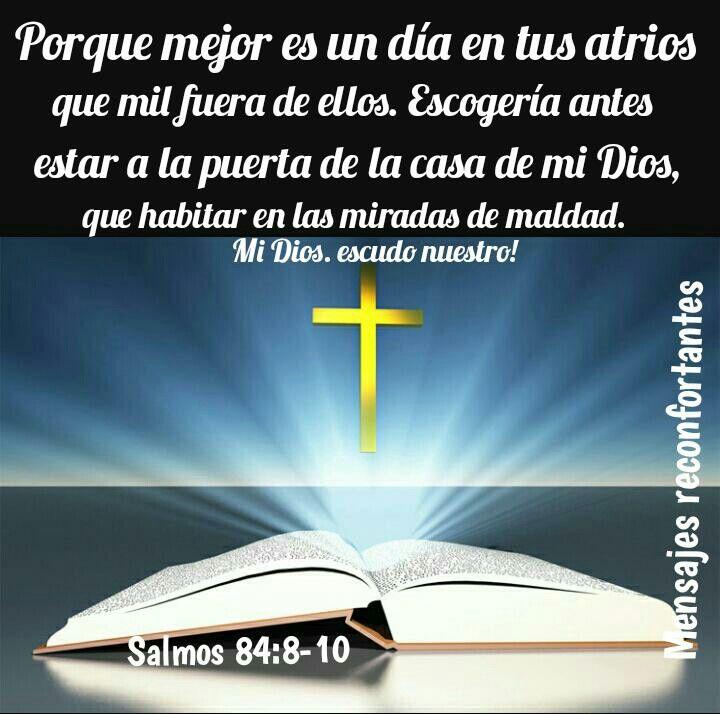 8 Jehová Dios de los ejércitos, oye mi oración; Escucha, oh Dios de Jacob. Selah  9 Mira, oh Dios, escudo nuestro,Y pon los ojos en el rostro de tu ungido.  10 Porque mejor es un día en tus atrios que mil fuera de ellos. Escogería antes estar a la puerta de la casa de mi Dios, Que habitar en las moradas de maldad. Salmos 84:8-10 Señor, en tu presencia hay plenitud de gozo. 🙏🏼👣🌹