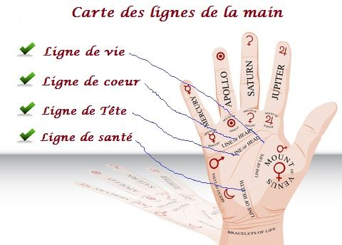 CHIROMANCIE  : Les Lignes de la Main: Arcenciel20.com  Les Lignes de la Main fournissent...
