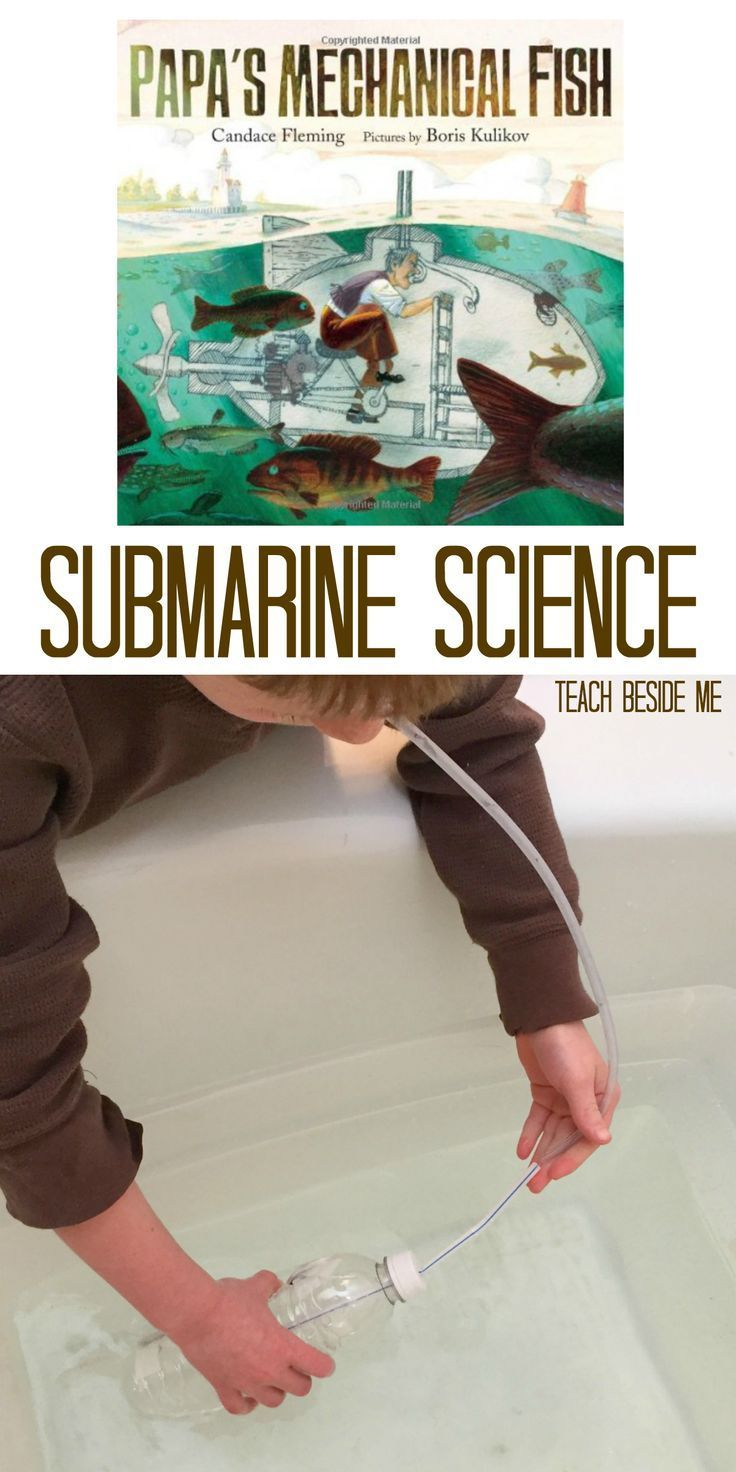 563 best preschool science images on pinterest science for Fishing science fair projects