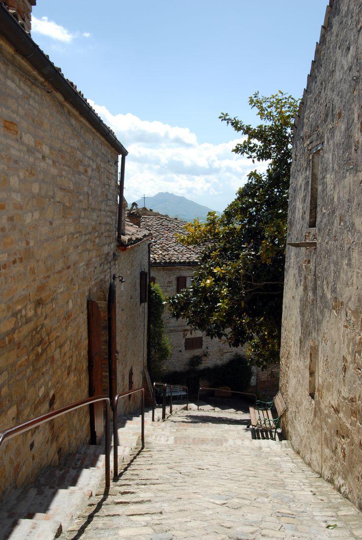 Scorci in località castello  #marcafermana #montelparo #fermo #marche