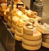 Ummm Dutch Cheese!