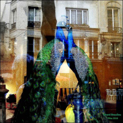 Reflet vitrine - ville