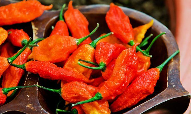 The 11 Spiciest Chile Peppers on Earth | The Daily Meal