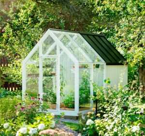 Förråd och växthus i ett.