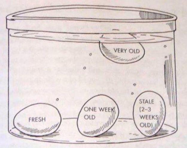 Du weißt nicht, ob die Eier in Deinem Kühlschrank noch gut sind? Wirf sie in Wasser und schaue, wie sie sich verhalten. | 33 geniale Lifehacks, die Du wirklich nützlich finden wirst