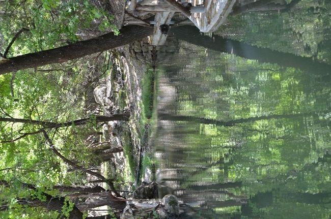 Petaloudes, la foresta delle farfalle   www.arttrip.it/petaloudes/