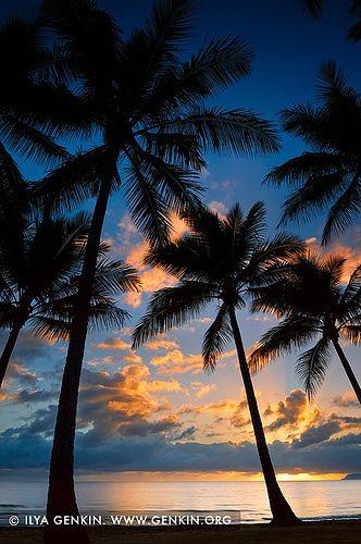 Vivid Sunrise at Palm Cove, Cairns, Queensland #Australia