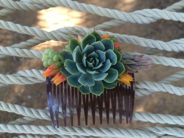 Succulent Comb - Live bulk wholesale wedding Favor gifts at the succulent source - 1