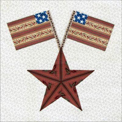 Civil War Quilts: Yankee Diary Block 2: Susan B.'s Star by Becky Brown