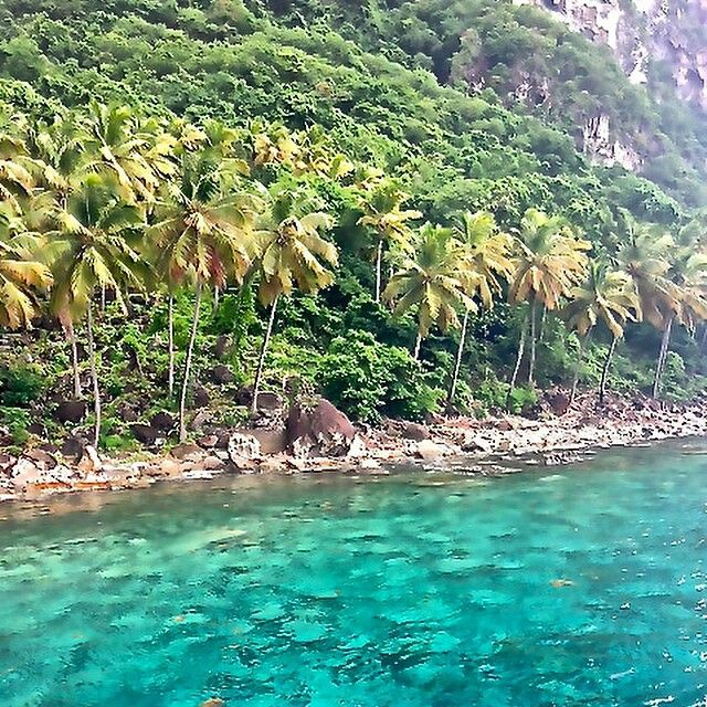 17 best images about st lucia on pinterest west coast for Tropical vacations in december