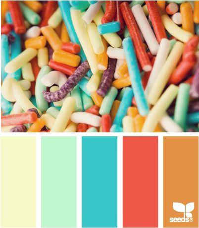 """""""sprinkled color"""" - If you can paint/wallpaper than a base color could be chosen & the rest used as accent colors. If you can't paint than color could be brought in through furniture & accessories.  I personally would pick about 3-5 complimentary colors to use through out the house, using 2-3 in each room, with the colors overlapping through out the house/apt."""