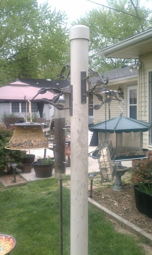Bird feeder pole. Bought a broken piece of PVC pipe for a $1.00 and an end cap for $2.00. Buried pole 3 ft. in ground. Attached hanging basket brackets at different heights. It's been up for 6 years now and the birds love it.