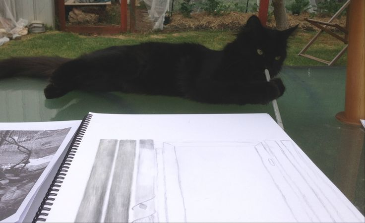 Kale finds time in his busy schedule to draw